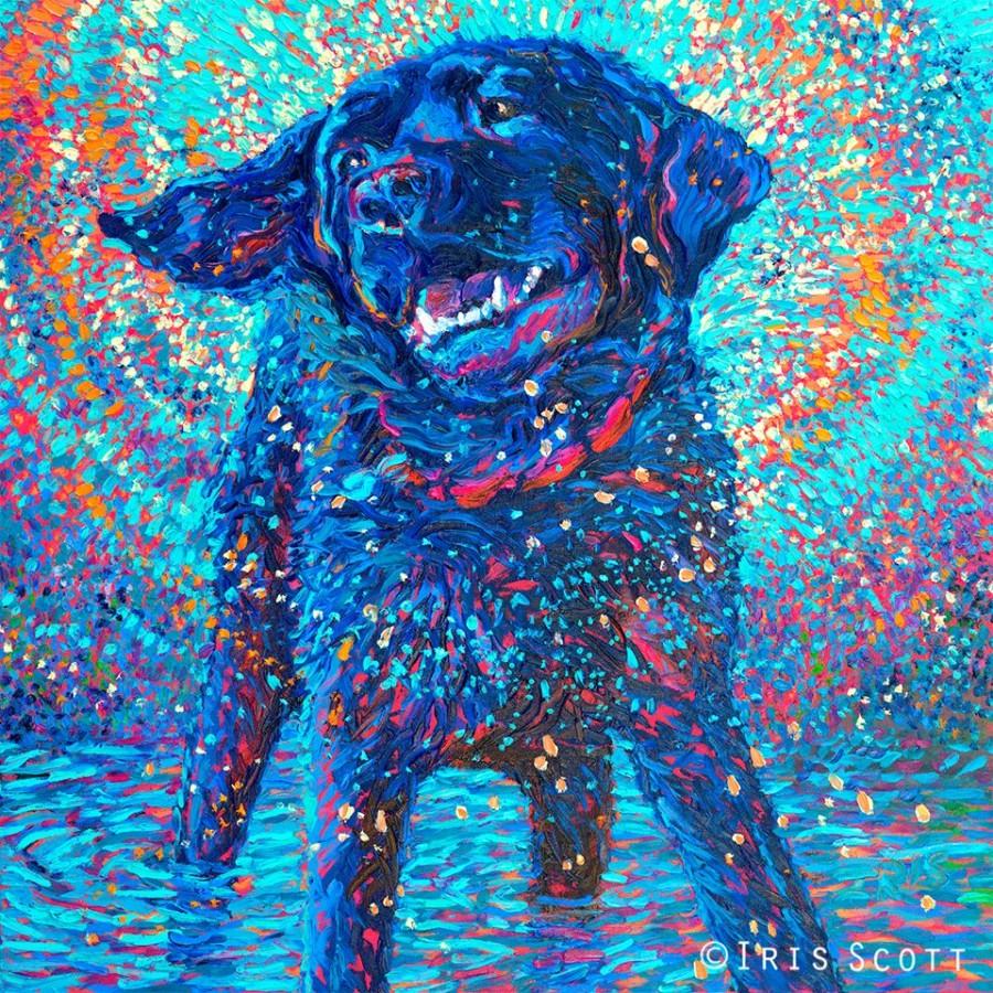IrisScott_dog
